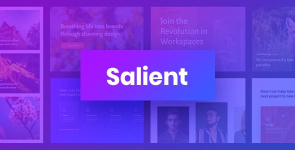 [Nulled] Salient v13.0.5 - Responsive Multi-Purpose Theme